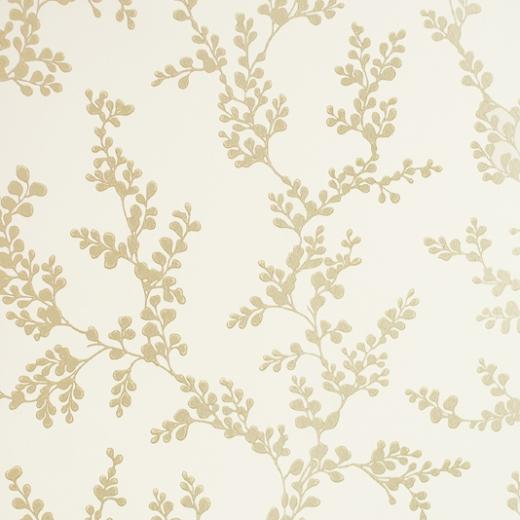 Shadow Fern Wallpaper Ivory GPBaker Crayford Wallpaper collection
