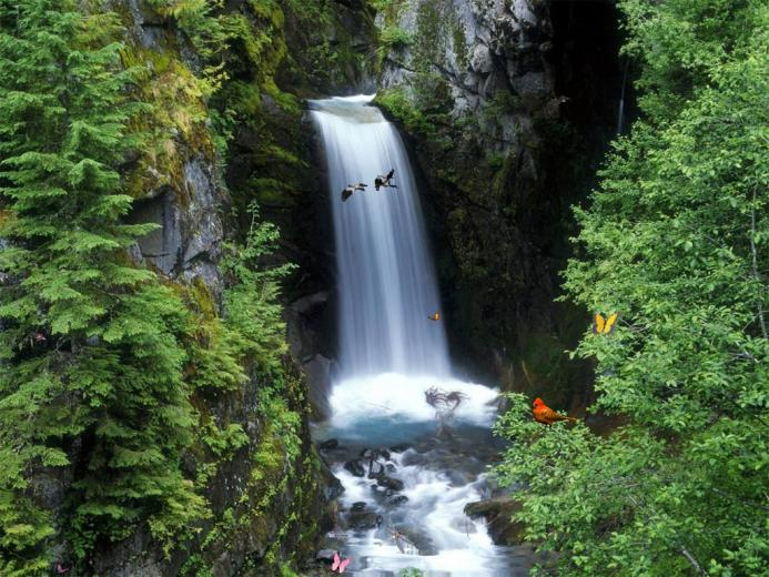 Charming Waterfalls screensaver add a magic window of ceaseless Joy