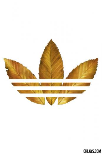 Adidas iPhone Wallpaper 5795 ohLays