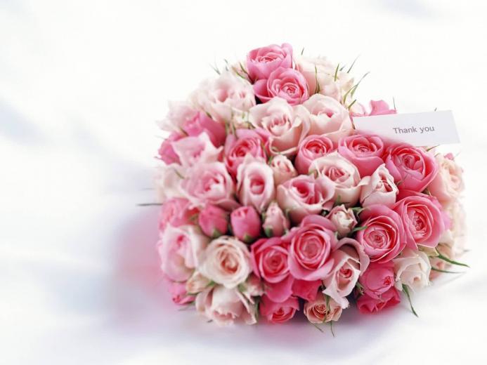 Download Flowers wallpaper cute flower z heart