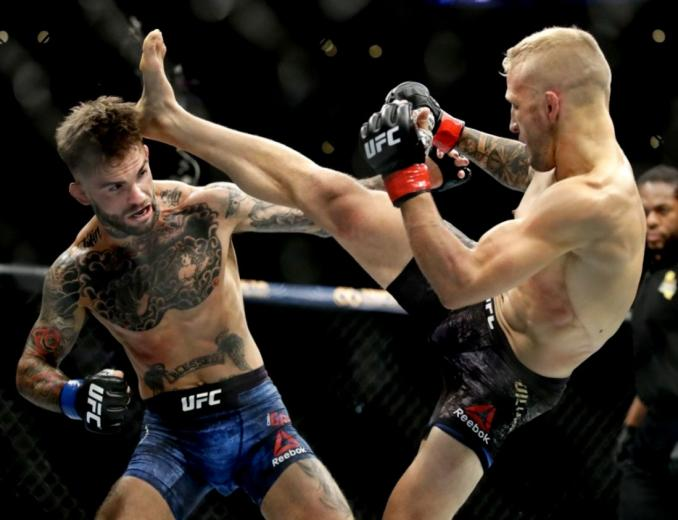 Ufc Pictures Wallpapers Jleb