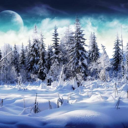 iPad Wallpapers Download 2012 Christmas Winter
