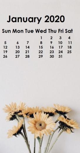 Monthly 2020 iPhone Calendar Wallpaper