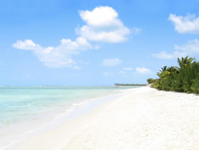 Florida Gulf Coast Beaches HD wallpaper   Florida Gulf Coast Beaches