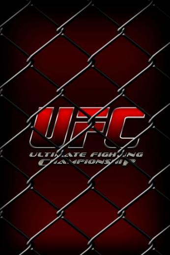 UFC   Ultimate Fighting Championship Leather Ufc fighters Ufc