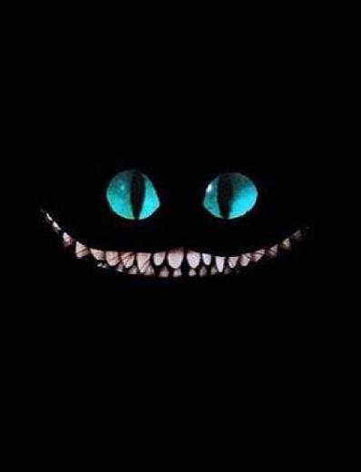 Cat smile iPhone lock screenwallpaper Disney Pinterest