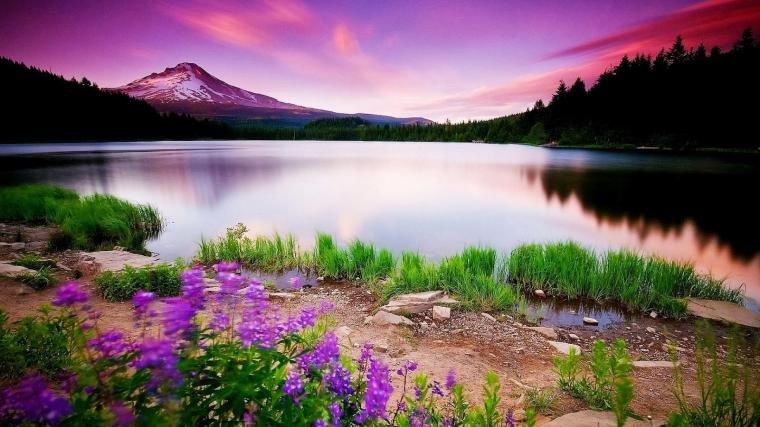 HD Size Nature Wallpapers Downloads Full HD Nature Wallpapers