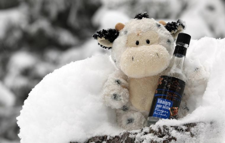 Wallpaper winter white snow wine toy bottle cow Christmas