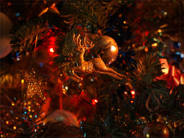 Christmas Trees wallpaper christmas tree decorations wallpaper