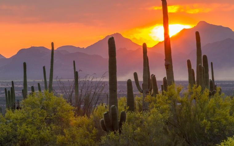 Arizona travel size