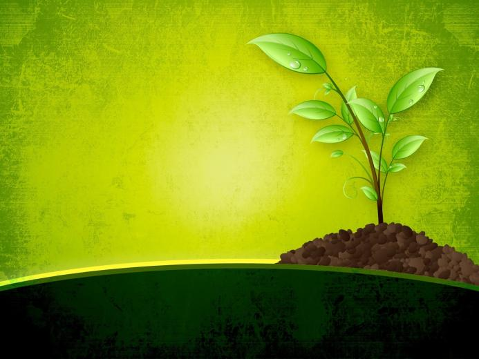Nature PowerPoint BackgroundsWallpapers Download   PPT Backgrounds