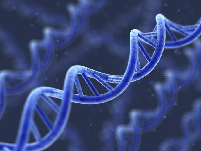 Genetic DNA Computer Wallpaper 50092 1600x1200px