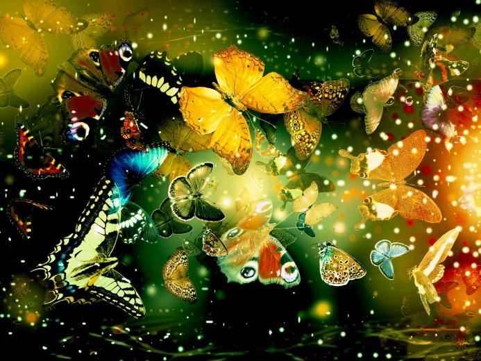 Wallpapers   HD Desktop Wallpapers Online Desktop Wallpapers