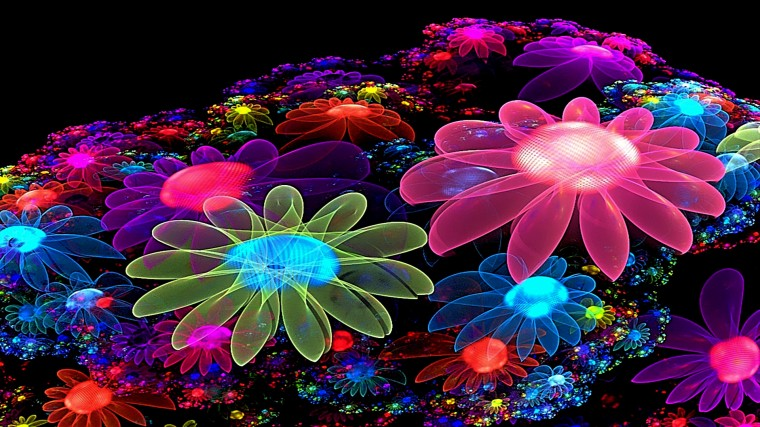 HD 3D Wallpapers Cool Colorful Flowers Desktop Wallpapers