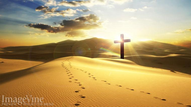 Related Pictures footprints in the sand hd wallpaper picture