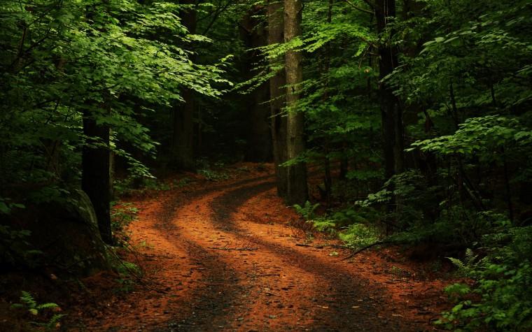 Nature Wallpaper HD Background Widescreen 7033 HD Wallpaper