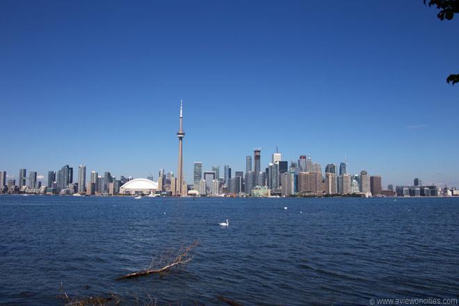 Toronto Skyline   Toronto Pictures