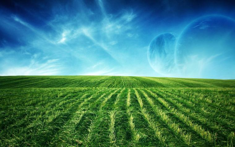 Field Animated Background Beach Wallpapers For Desktop Backgrounds