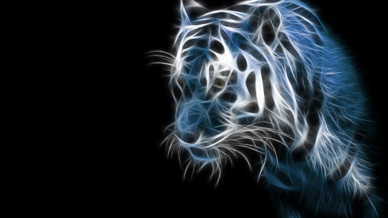 Download Tiger Animal Wallpaper 1920x1080 Full HD Wallpapers