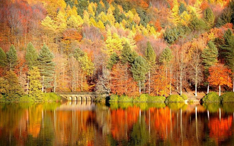 autumn desktop backgrounds hd Pictures 19201200 Autumn Images