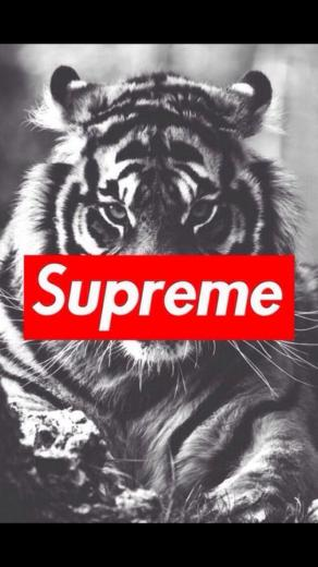 supreme iPhone wallpapers Pinterest