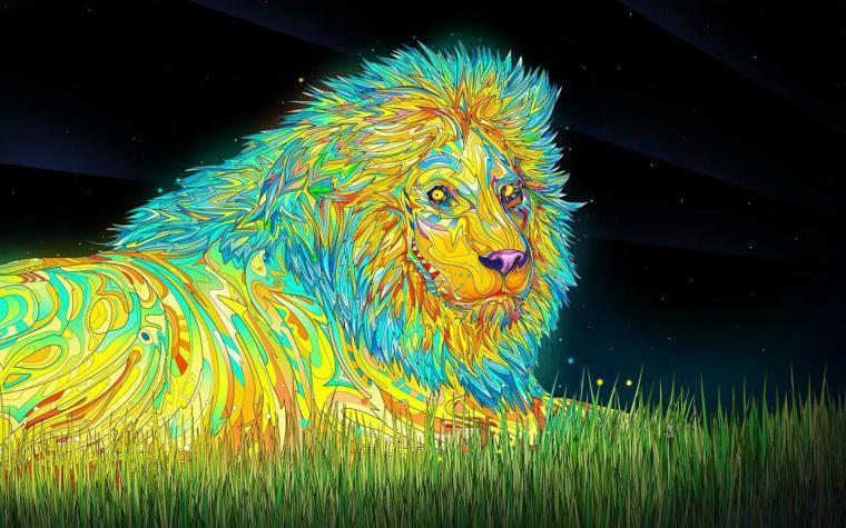 trippy lion   Imgur