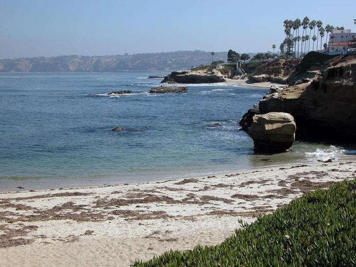 jolla cove la jolla cove la jolla cove moonlight beach