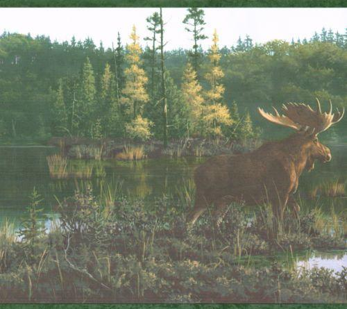 COUNTRY MOOSE AND CABIN ON THE LAKE 10 14 Wallpaper Wall bordeR
