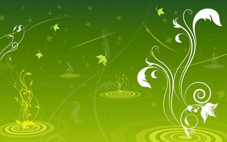 Green Swirls Wallpaper   Green Wallpaper 20988856