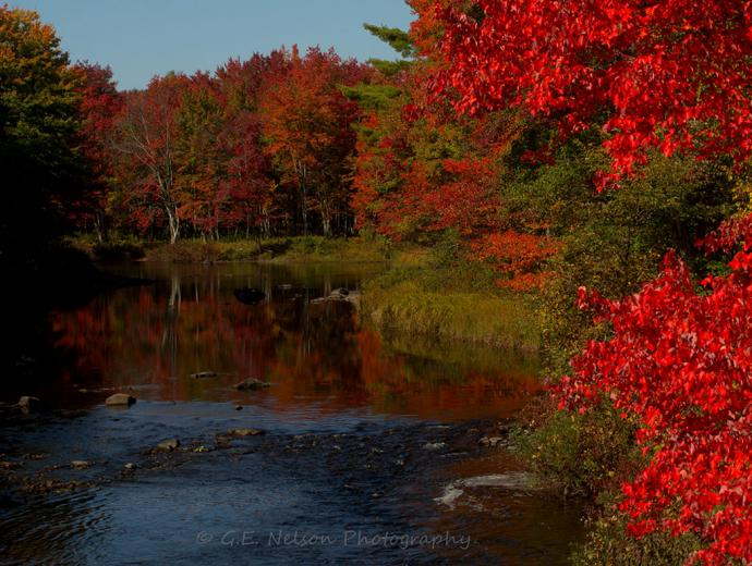 Maine Foliage Photo Gallery