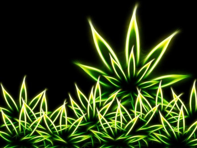 Description Weed Wallpaper is a hi res Wallpaper for pc desktops