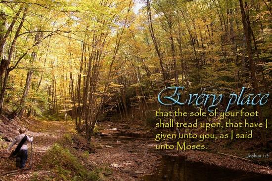 Christian Wallpaper   KJV Scripture and Nature Photography by