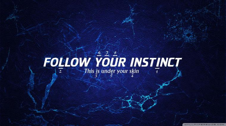 Instinct Wallpaper 20481152 164970 HD Wallpaper Res 2048x1152
