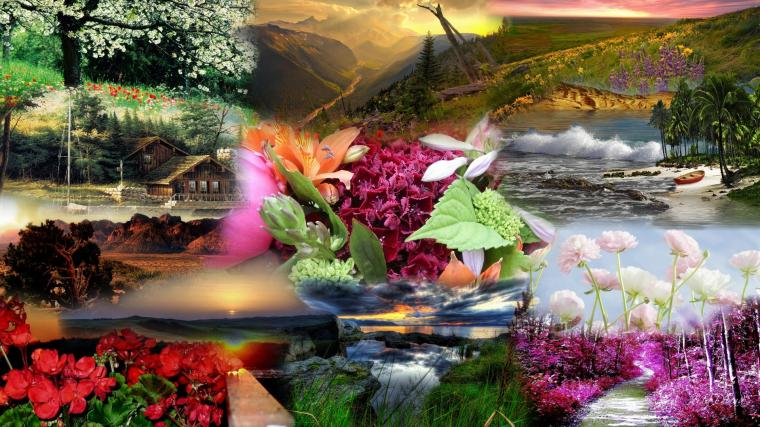Beautiful Nature Wallpaper Latest Hd Wallpapers