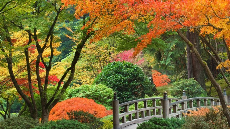 Japanese garden wallpaper 3379