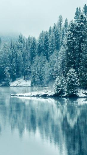 Turquoise Pine Forest Lake Snow in 2020 Winter wallpaper Winter