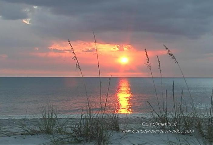 Florida Beaches Wallpaper   Wallpapers And Pictures