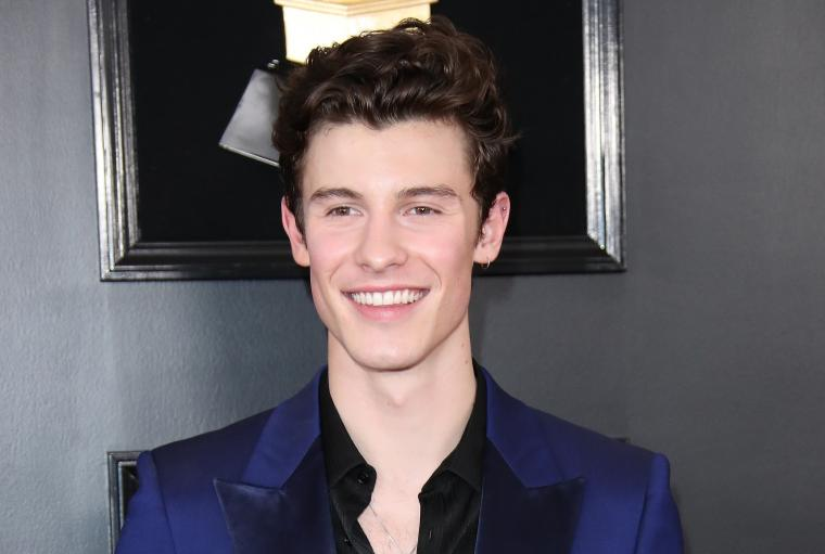 Shawn Mendes takes it all off in new Calvin Klein underwear campaign