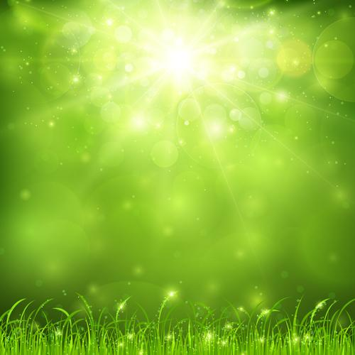 Green Nature Backgrounds Green nature and sunlight