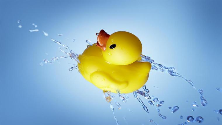 Rubber duck Live Wallpaper for Android   APK Download