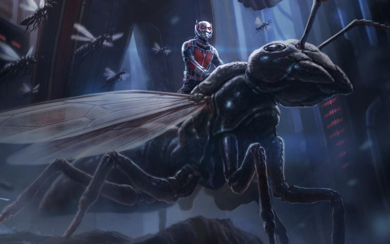 Ant Man Artwork Wallpapers HD Wallpapers