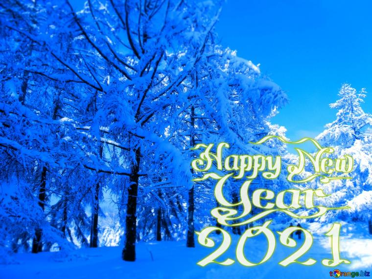 Download picture happy new year 2021 Snow Winter blue forest
