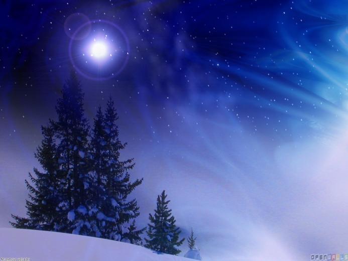 Beautiful winter night wallpaper 8202   Open Walls