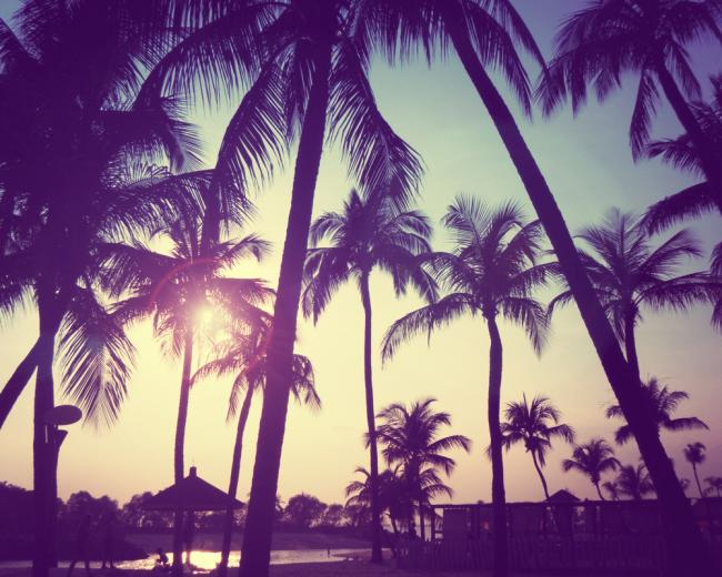 Cute Summer Backgrounds Tumblr