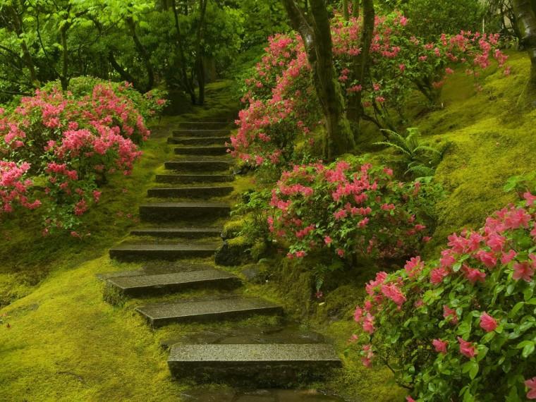 Japanese Garden Washington Park Wallpapers HD Wallpapers