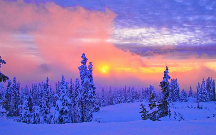 wallpapers Beautiful Winter Scenery Wallpapers
