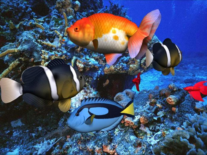 3d Animated Wallpaper Download 220 HD Wallpaper 3D Desktop