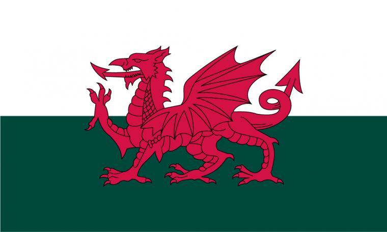 1024x615px Welsh Flag Wallpaper