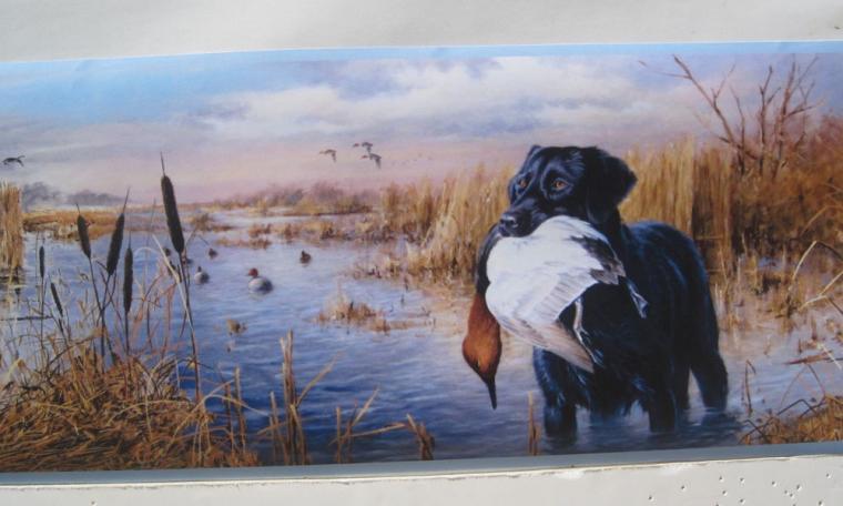 Labrador Retriever Dogs Duck Hunting Wallpaper Border 6 eBay
