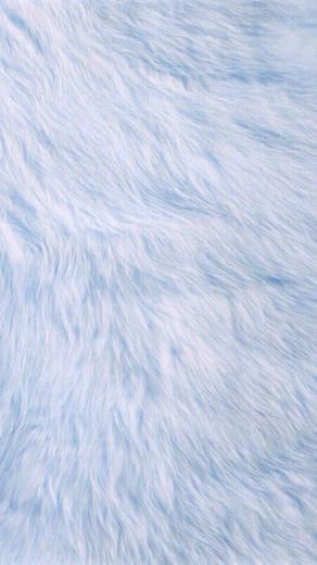 Baby Blue Fur iPhone Wallpaper Feel Me Baby blue wallpaper
